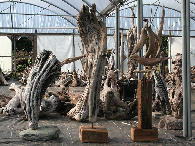Driftwood images driftwood uk Driftwood sculptures for garden