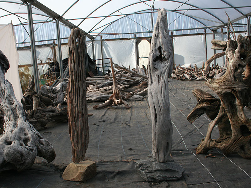 Driftwood sculptures driftwood uk Driftwood sculptures for garden
