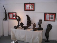 Driftwood Art Exhibition