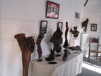 Exhibition Driftwood Art