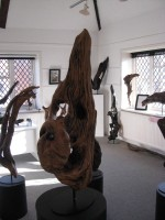 Driftwood_exhibition