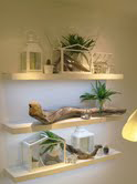 driftwood_shop_display