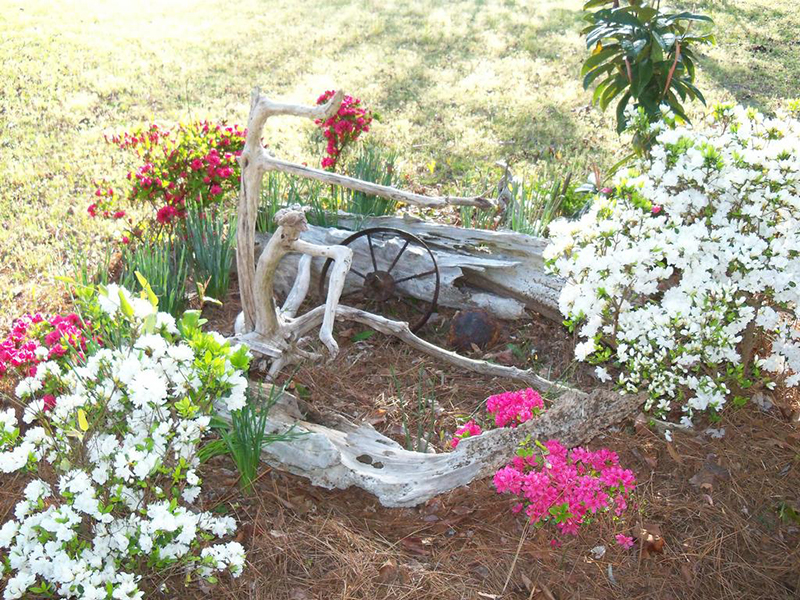 Landscaping With Driftwood : Driftwood for gardens and landscaping uk