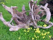 Driftwood Garden Feature