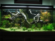Driftwood Aquarium Decoration